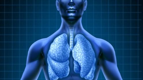 ריאות (אילוסטרציה)