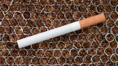 עישון סיגריות (צילום: אילוסטרציה)