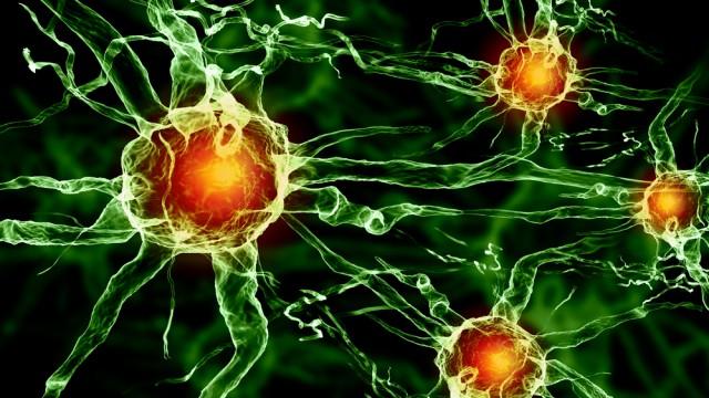 תא עצב במוח (צילום: אילוסטרציה)