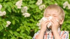 אלרגיה בילדים (צילום: אילוסטרציה)