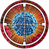 immuno