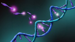 אימונותרפיה המבוססת על פרופיל גנטי (צילום: אילוסטרציה)