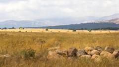 רמת הגולן (צילום: אילוסטרציה)