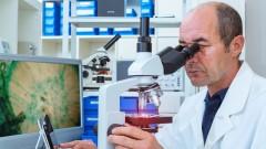 חוקר בוחן ביופסיה במעבדה (צילום: אילוסטרציה)
