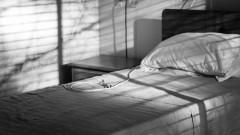 hospital bed (אילוסטרציה: shutterstock)