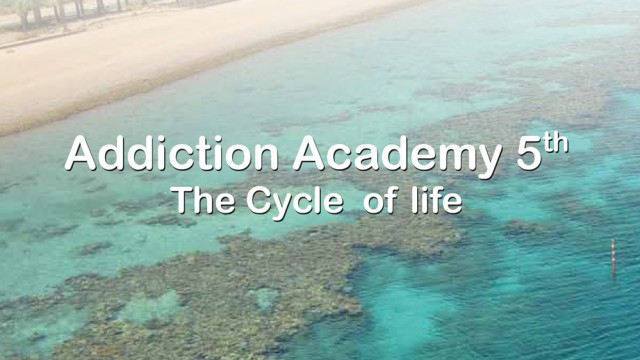 Addiction-Academy_Addiction_The-cycle--of-lifefinal-1