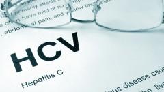 HCV, הפטיטיס C (צילום: אילוסטרציה)