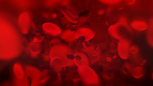 קרישת דם (צילום: אילוסטרציה)