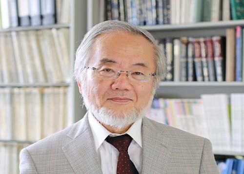 פרופ' יושינורי אוסומי (מקור: ויקיפדיה)