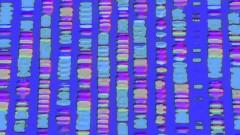 "ריצוף גנטי, דנ""א, מוטציות (צילום: אילוסטרציה)"
